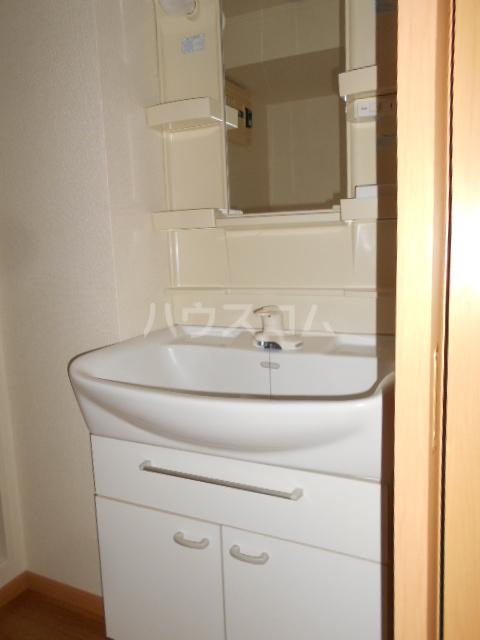 グレイス 204号室の洗面所