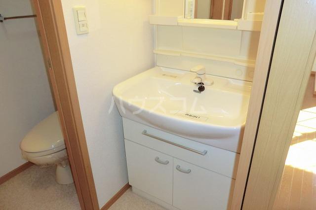 クリスタルハート 203号室の洗面所