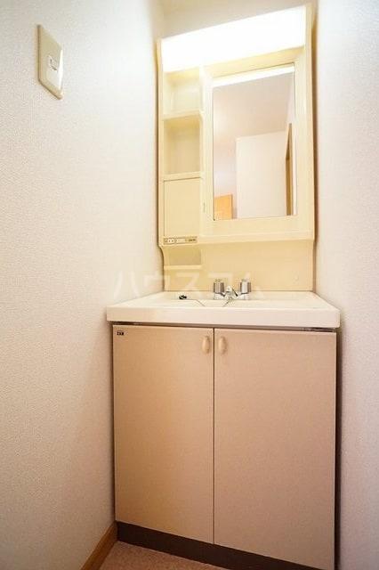 エーデルハイム 02030号室の洗面所