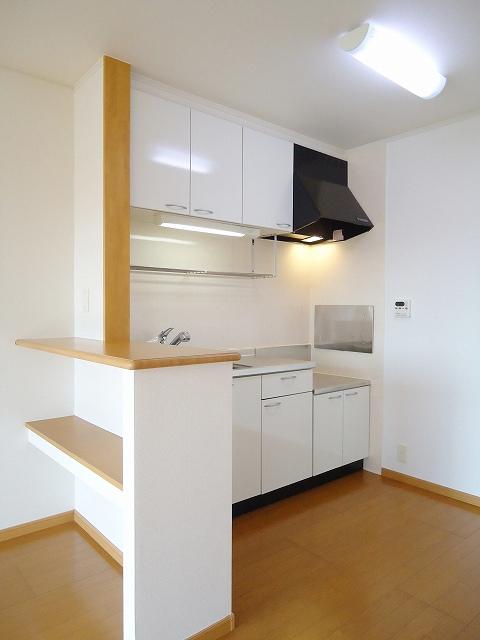 グランデールA 202号室のキッチン
