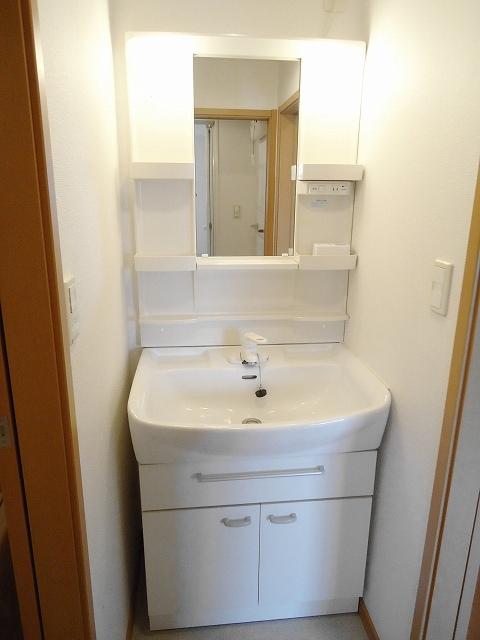 グランデールA 202号室の洗面所