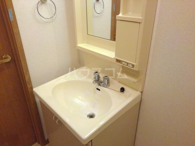 ターニングビレッジA 01010号室の洗面所