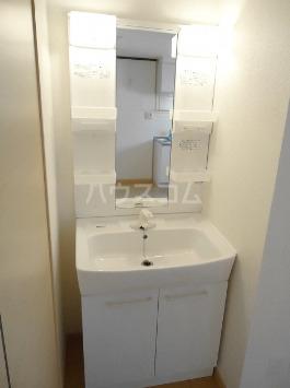 アーバンヒル 106号室の洗面所