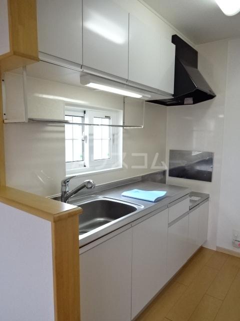 グレイス スクエアー 201号室のキッチン