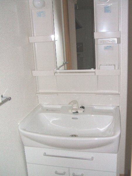 ラフィーネA A103号室の洗面所