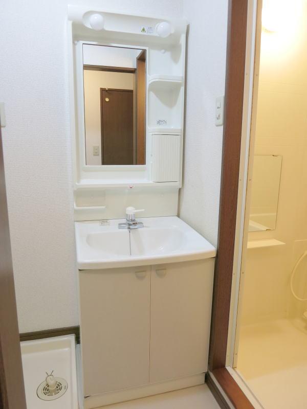 シャルマン21 502号室の洗面所