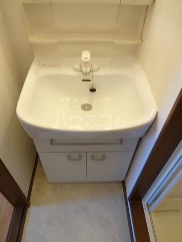 シームリー・ハウス 203号室の洗面所