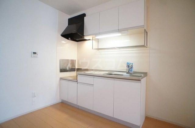 メゾンシュクレ Ⅰ(アン) 204号室のキッチン