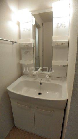 プラシード すみれ 101号室の洗面所