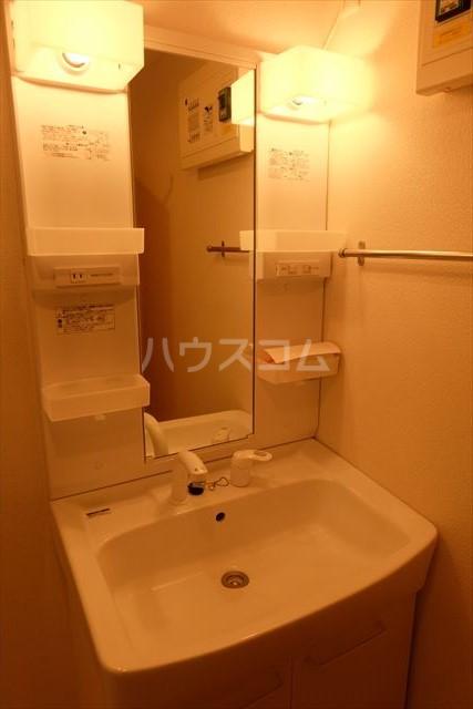 ネオ エレガンスC 02020号室の洗面所