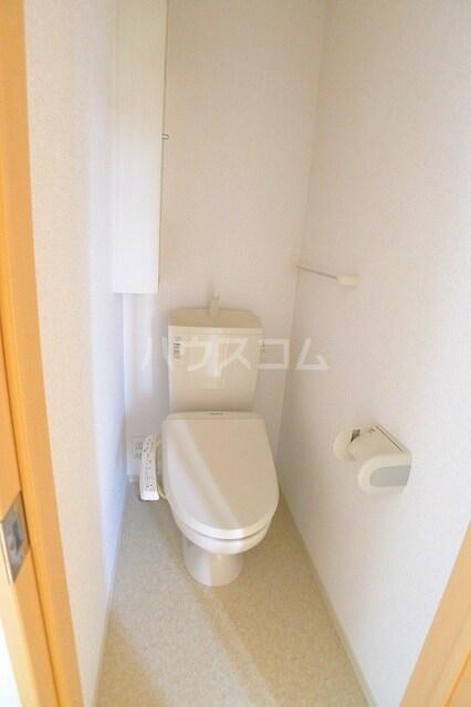 カーサプラシードC 03020号室のトイレ
