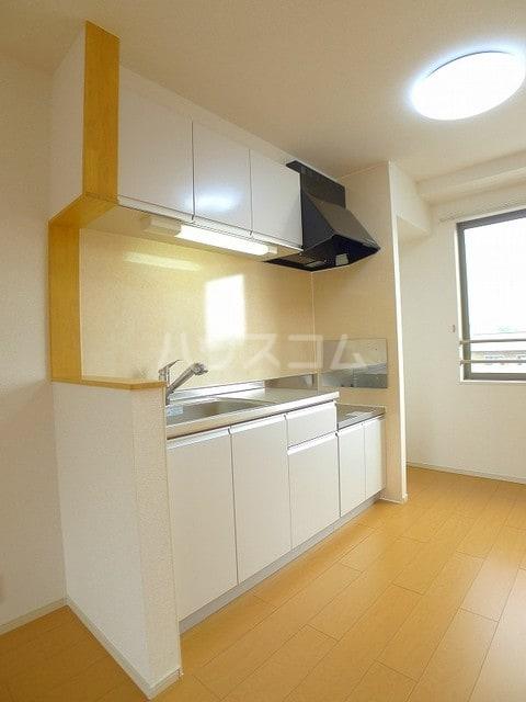 カーサプラシードC 03020号室のキッチン