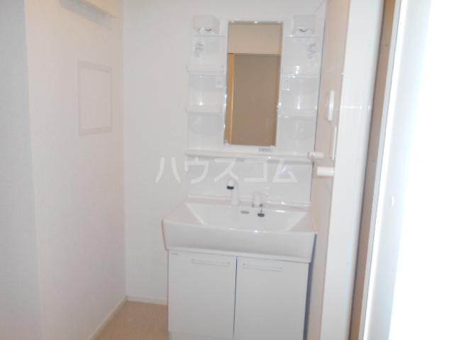 グランペⅡ 02050号室の洗面所