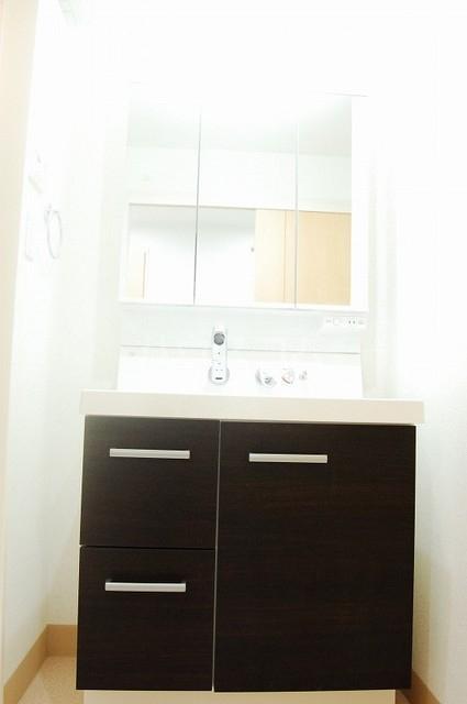 テゾーロ ミオ 105号室の洗面所