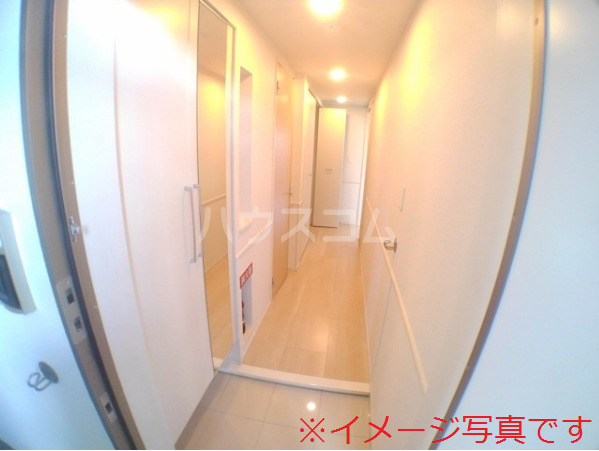 ベリッシュ 601号室の玄関