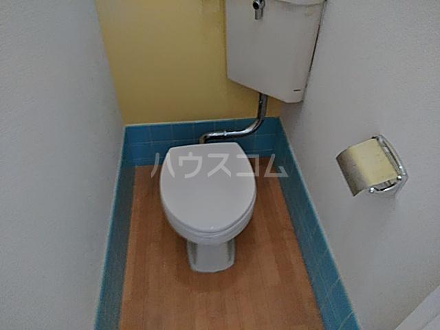 ヴィラ・ビアンカ 203号室のトイレ