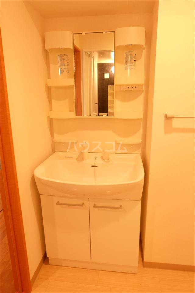 グランヒルズ 205号室の洗面所