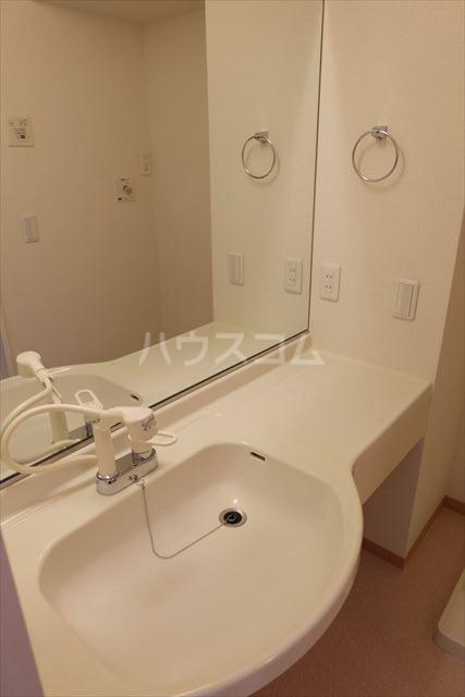 アネシス城北 B 303号室の洗面所