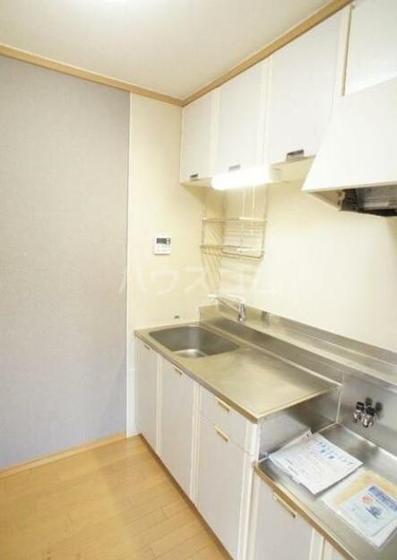 グリーンテラス田園調布 105号室のキッチン