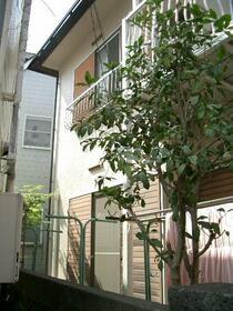 戸沢アパート 102号室の景色