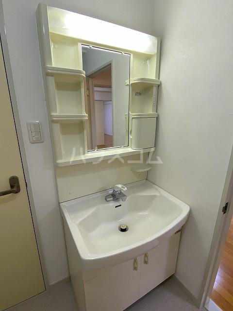 メゾン緑寿 B-101号室の洗面所