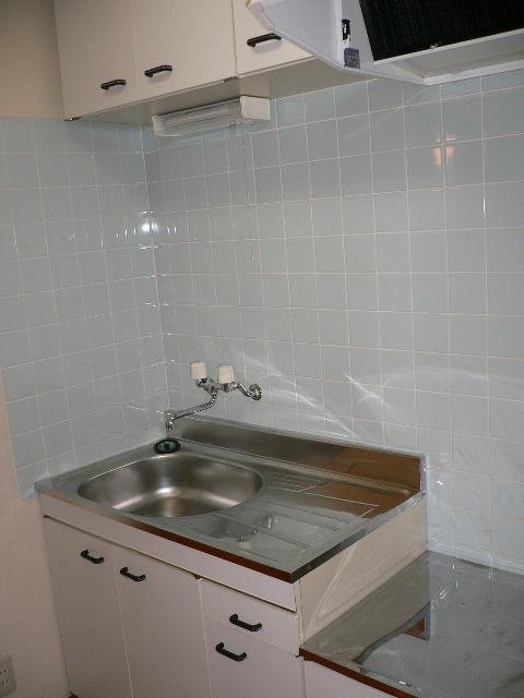 ネクストハイツ赤堀Ⅱ 107号室のキッチン