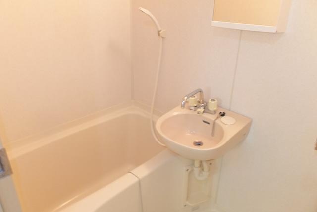 ジュネスB棟 206号室の洗面所
