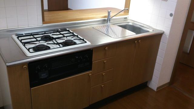 カサグランデ大宮 301号室のキッチン