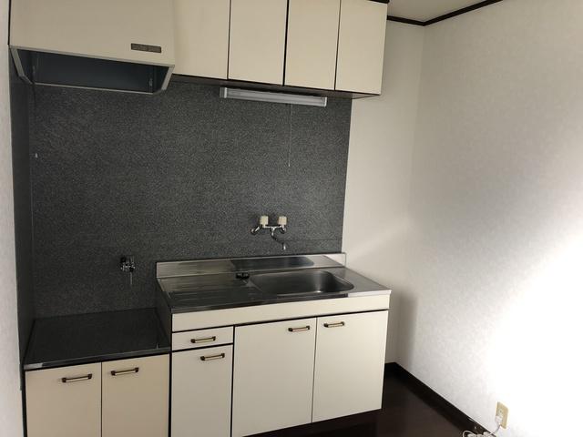 ビレッヂ ライトグリーン 102号室のキッチン