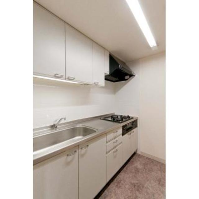 リューズ・リバー月島 504号室のキッチン