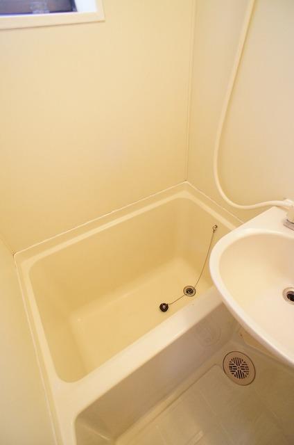 ピュアハウス松ケ丘二番館 205号室の風呂