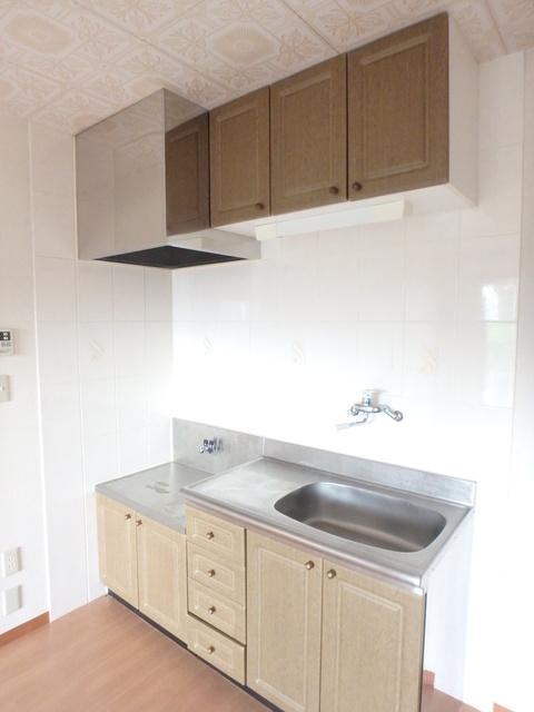 サントリーニマンション 105号室のキッチン