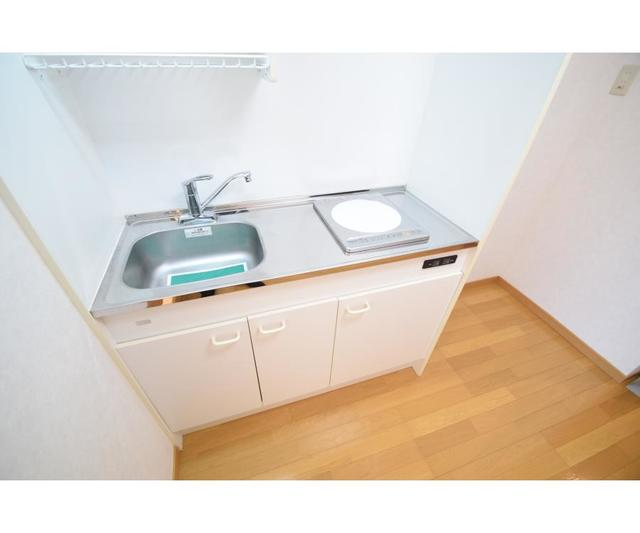 ブドワール21 307号室のキッチン