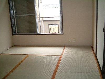 ニューハイツ市川 201号室の居室