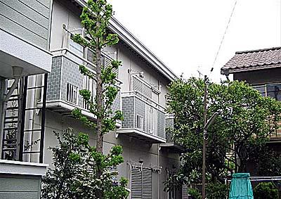 マイネス金沢シーサイド 203号室の外観