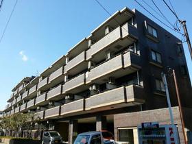 新着賃貸1:千葉県松戸市上本郷の新着賃貸物件
