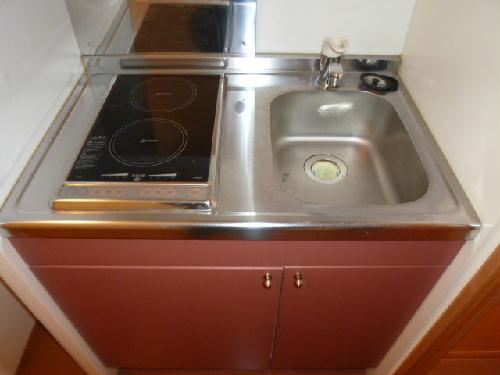 レオパレスエレガンス サトウⅠ 106号室のキッチン