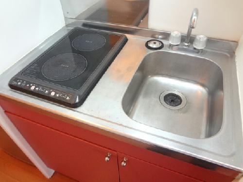 レオパレスグローリーハウス24 209号室のキッチン