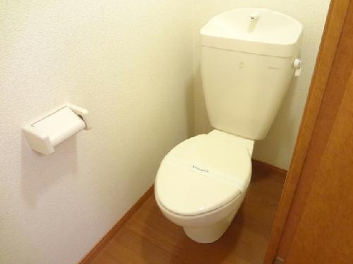 レオパレスグローリーハウス24 209号室のトイレ
