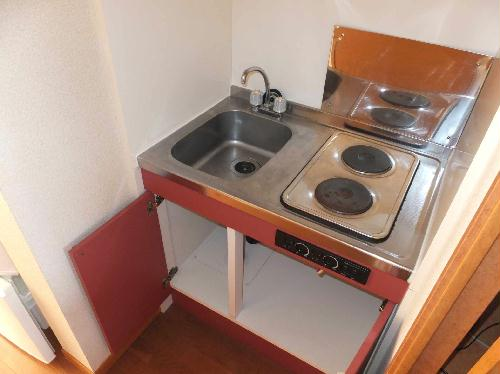 レオパレスフルールⅠ 206号室のキッチン