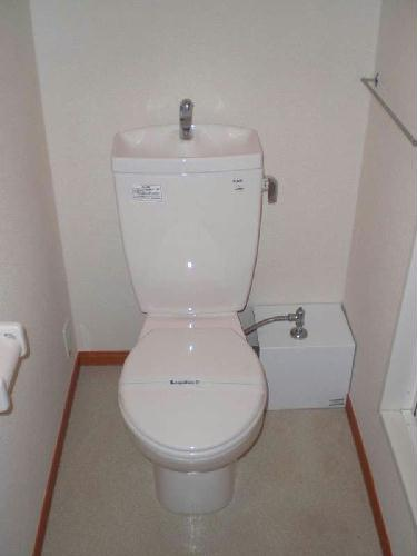 レオパレスTAIKOU2 202号室のトイレ