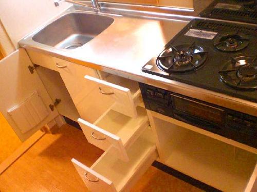レオパレスMⅠ 201号室のキッチン