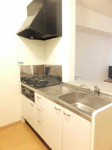 レオパレスドルフⅡ 108号室のキッチン