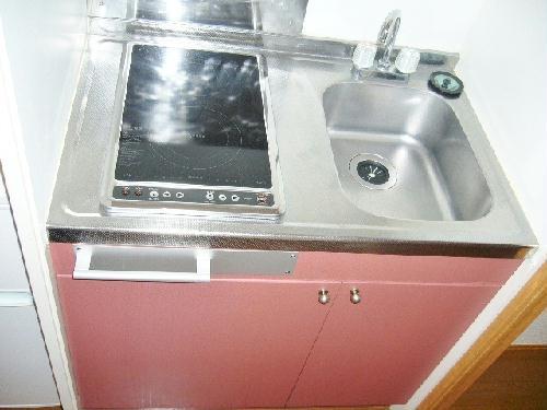 レオパレスα Ⅱ 202号室のキッチン