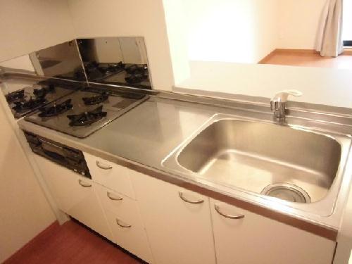 レオパレスKOMOTO足利 107号室のキッチン