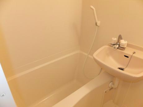 レオネクストパストラル セゾン 111号室の風呂