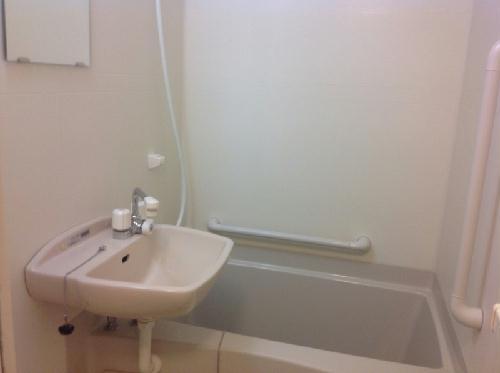 レオネクストリッフェル 202号室の風呂
