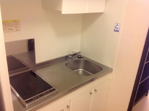 レオネクストリッフェル 202号室のキッチン