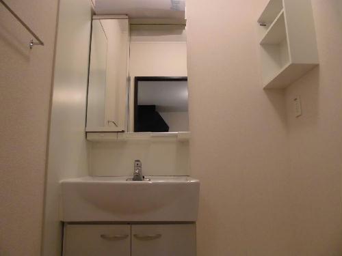 レオネクストストリームブライト 201号室の洗面所
