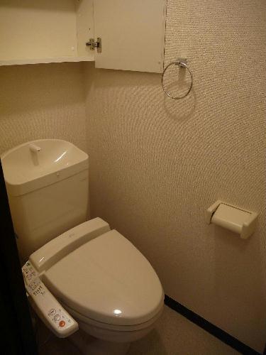 レオネクストジェマーレ大網 102号室のトイレ